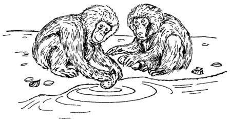 наличе волосатых людей говорит о родстве с обезьянами